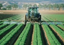 Impact of Agriculture on Environment | 6 Important Ways