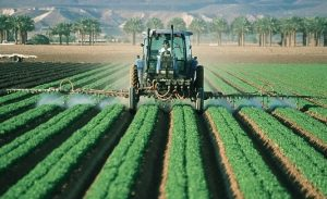 Impact of Agriculture on Environment-pesticides